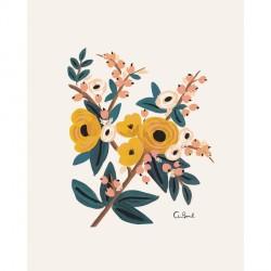 Affiche 20x25 cm - Marigold botanical