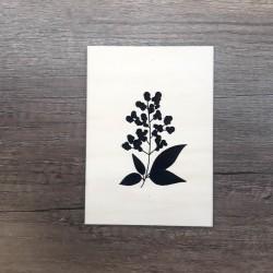Carte en bois sureau