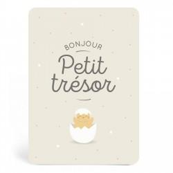 Carte de naissance Petit trésor