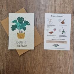 Carte à planter chalut