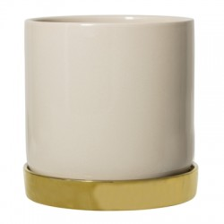 Pot de fleurs beige et coupelle dorée