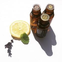 Découverte des huiles essentielles et son roll-on