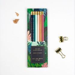 Boîte de 6 crayons de papier avec gomme - Wild