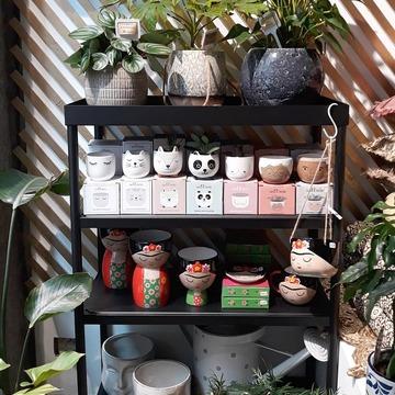Et bon week-end !!! Ps : vous aimez notre nouvelle installation dans le green corner du Bruit du bonheur ? Et tout ces petits pots ? Et la collec Frida qui est de retour ?