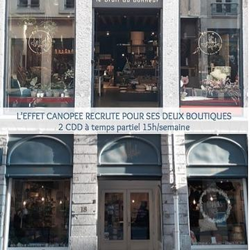 🎉 L'EFFET CANOPEE RECRUTE 🎉 2 postes