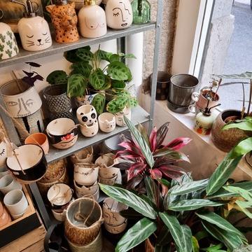 Happy vendredi ! Plein de petits pots ont rejoint les étagères de nos Green corners ces derniers jours ! Mais aussi des vaporisateurs, des pots à suspendre et bien plus encore !
